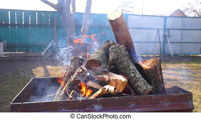Fire trees wind burn
