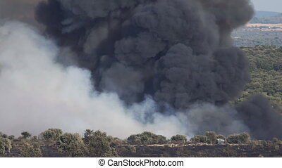 Fire with huge smoke - Horizon with fire over trees and huge...
