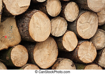Pile of round tree logs prepare for fire