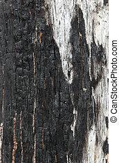 fire wood texture