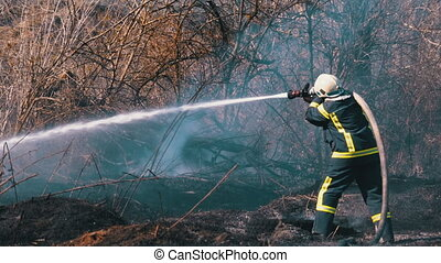 Firefighter in Equipment Extinguish a Forest Fire with a Fire Hose. A firefighter puts out large scale wood fire using a water hose. Wild forest during dry season. Spring. Smoke rise up. Slow Motion.