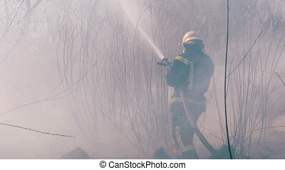 Firefighters Extinguish a Forest Fire with Fire Hose. Fireman in equipment puts out a large scale wood fire using a water hose. Strong flames, smoke rise from burning dry bush. Spring. Slow Motion
