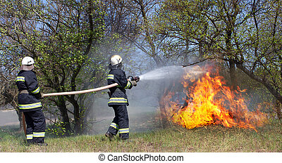 Firefighters extinguish a fire in a forest fire by water...
