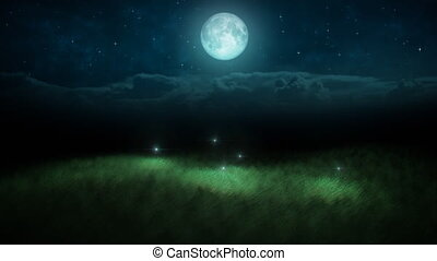 Fireflies at night and moon loop