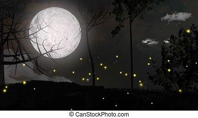 Fireflies - Illuminated fireflies.
