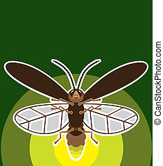FireFly - firefly illustration clip-art vector eps
