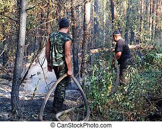 Firemen fighting a bushfire