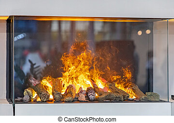 Fireplace Behind Glass