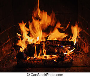 Fireplace with birch firewood and flame. Closeup.