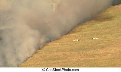 firetrucks near large brush fire