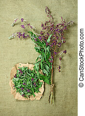 fireweed., 薬, herbs., dried., 草, 薬効がある, phytotherapy