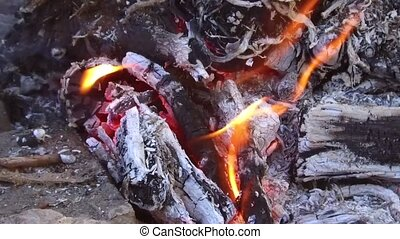 firewood burning in bonfire outdoors - heat and fire concept...