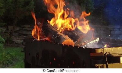 firewood burning in brazier outdoors - cooking, heat and...