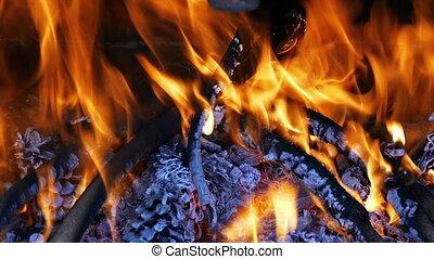 Firewood Burning in the Fireplace