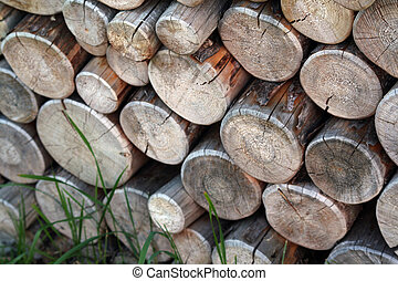 Firewood close up