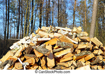 firewood dries in sun rays - Firewood dries in sun rays....