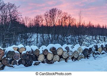 Firewood in winter