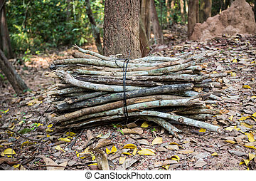 Firewood on the ground