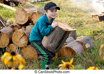 Firewood - Young village boy bringing hard firewood in front...