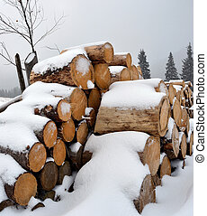 Firewood under the snow in winter