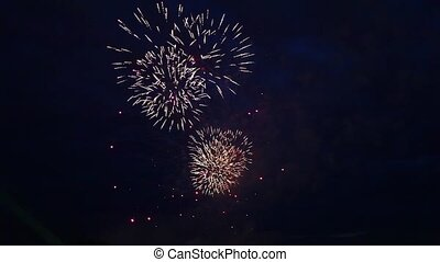 Firework Display - fireworks against the dark sky