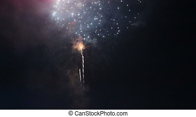firework in night sky