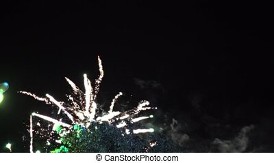 Firework in the night sky, holiday, public. Summertime...