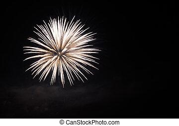 firework isolated on black background