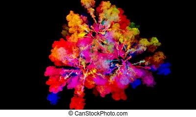 firework of paint, explosion of colorful powder isolated on black background. 3d animation as a colorful abstract background. Rainbow colors 11