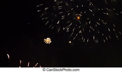 firework on the open sky at night