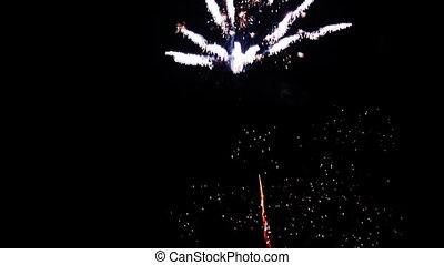 Firework - Bright firework in black night sky
