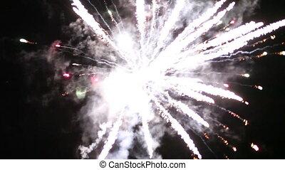 Firework - firework in night sky