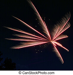 Fireworks Burst 1