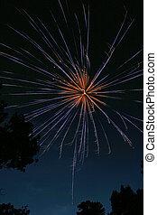 Fireworks Burst 2