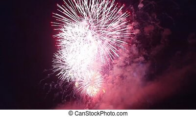 fireworks chrysanthemum