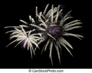 Fireworks Close-up - a single effect in a fireworks display