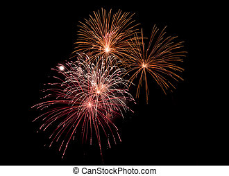 fireworks - Fireworks light up the sky with dazzling display