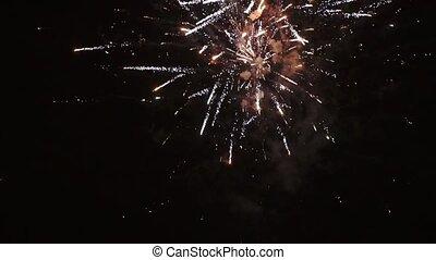 Fireworks in a dark sky, HD