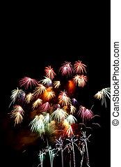 Fireworks in a sky