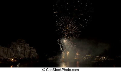 Fireworks in the city night
