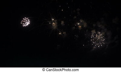 fireworks in the night sky in honor of the holiday. -...