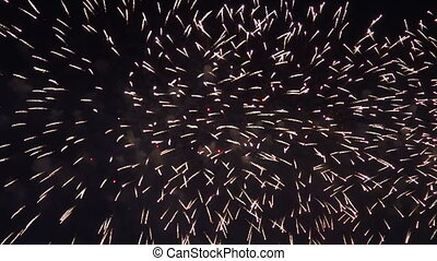 Fireworks in the night sky