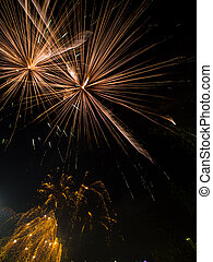 Fireworks in the Park 5