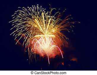 fireworks in the sky at night