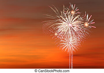 Fireworks in the twilight sky.
