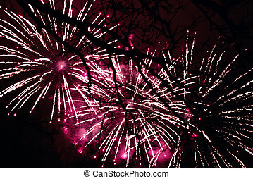 Fireworks light up the sky in the night sky through the...