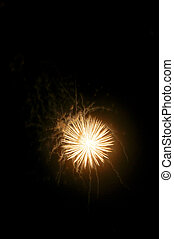 Fireworks on Black - A display of fireworks against a black...