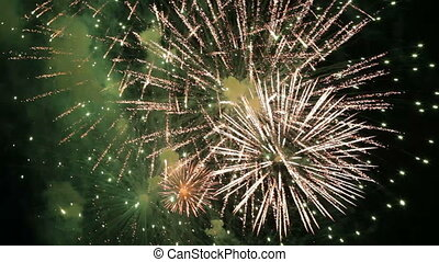 Fireworks on Fourth of July - Festive fireworks igniting the...