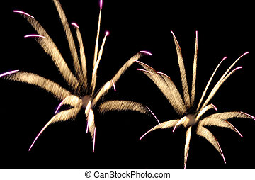 Fireworks reminding flowers - Expanding fireworks reminding...