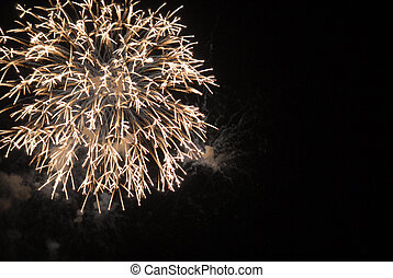 Fireworks - Shot of some fireworks on central Florida, ...